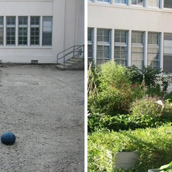 Carthay Center Elementary School, Before and After