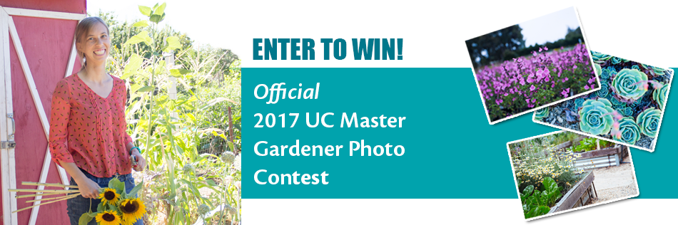 Enter to Win! 2017 Photo Contest