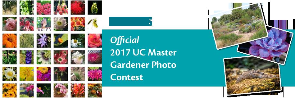 Photo Contest Header Winners
